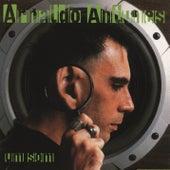 Um Som de Arnaldo Antunes