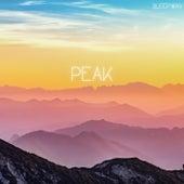 Peak (feat. Spa Music, Study Music & Deep Sleep Meditation) by Sleep.wav