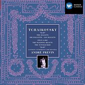 Tchaikovsky Ballets by Various Artists
