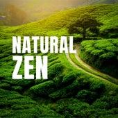 Natural Zen fra Nature Sounds (1)