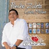 El Nobel del Amor von Poncho Zuleta & El Cocha Molina