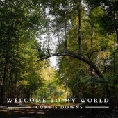 Welcome to My World by Curtis Downs