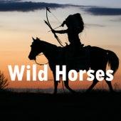 Wild Horses von Heaven is Shining