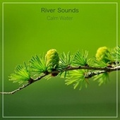 Calm Water by River Sounds