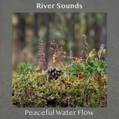 Peaceful Water Flow by River Sounds