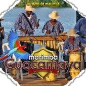 Al Ritmo de Marimba by Marimba Guacamaya