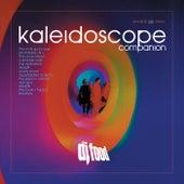 Kaleidoscope Companion by DJ Food