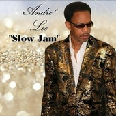 Slow Jam by Andre' Lee