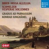 Biber, Schmelzer: Missa Alleluja / Vesperae Sollennes de Konrad Junghänel