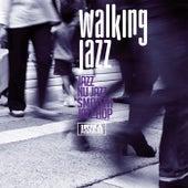 Walking Jazz (Jazz Nu Jazz Smooth Jazz Hop) de Various Artists