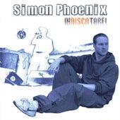 Indiscotabel by Simon Phoenix