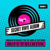 Secret Vinyl Album, Vol. 2 by Tidy Boys