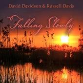 Falling Slowly by David Davidson