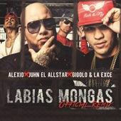 Labias Mongas (Remix) de Juhn