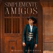 Simplemente Amigos de Misael Espinoza