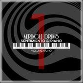 Sentimiento & Piano, Vol. 1 de Merengue Drums