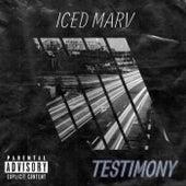 Testimony by IcedMarv