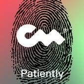 Patiently (Remix) by Kraig Rizzle