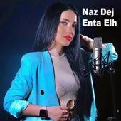 Enta Eih by Naz Dej