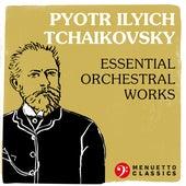 Pyotr Ilyich Tchaikovsky: Essential Orchestral Works de Various Artists