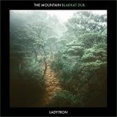 The Mountain (Blakkat Dub) de Ladytron