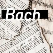 Brandenburg Concerti Bach de Orquesta Lírica de Barcelona