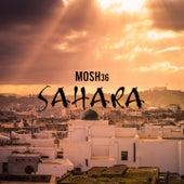Sahara von Mosh36
