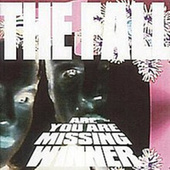 Are You Are Missing Winner (Deluxe Edition) by The Fall