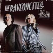 Love In A Trashcan von The Raveonettes