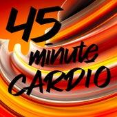45 Minute Cardio von Various Artists