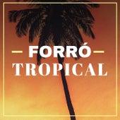 Forró Tropical de Various Artists