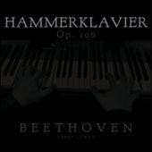 Beethoven: Hammerklavier, Op. 106 by Terry Lowry