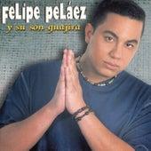 Felipe Pelaez Y Su Son Guajira de Various Artists