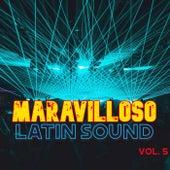 Maravilloso Latin Sound Vol. 5 de Various Artists