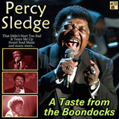A Taste from the Boondocks von Percy Sledge