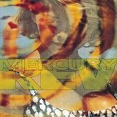 Yerself Is Steam de Mercury Rev