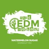 Watermelon Sugar de Hard EDM Workout