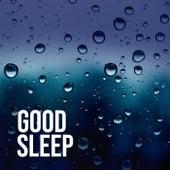 Good Sleep de Soothing Sounds