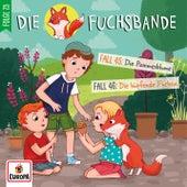 Folge 23: Fall 45: Die Pommesblume/Fall 46: Die hüpfende Füchsin by Die Fuchsbande