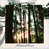Deep Forest Reflections by Atacustico