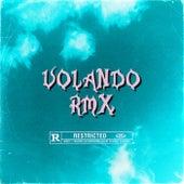Volando (Remix) by Nacho Radesca