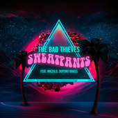 Sweatpants by The Bad Thieves