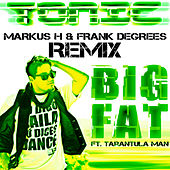 Big Fat Markus H & Frank Degrees Remix de Tonic