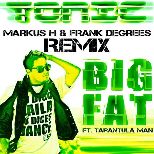 Big Fat Markus H & Frank Degrees Remix by Tonic