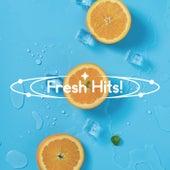 Fresh Hits fra Various Artists