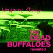 Wayfaring Stranger de The Dead Buffaloes Revisited