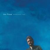 The Rise of Dreama Caldwell von Joe Troop