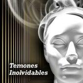 Temones Inolvidables de Various Artists