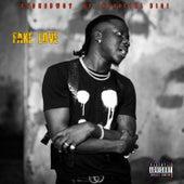 Fake Love (feat. Stonebwoy) de Official Bigi