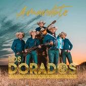Amandote by Los Dorados